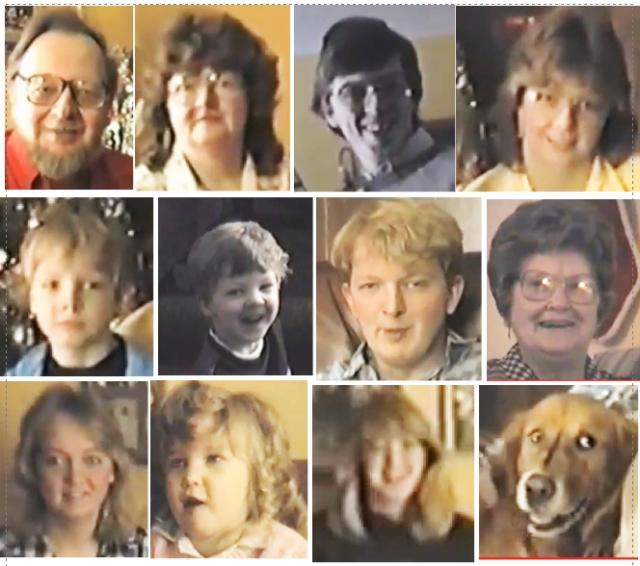 Vernon's 1985